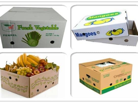 Thùng giấy carton đông lạnh xuất khẩu